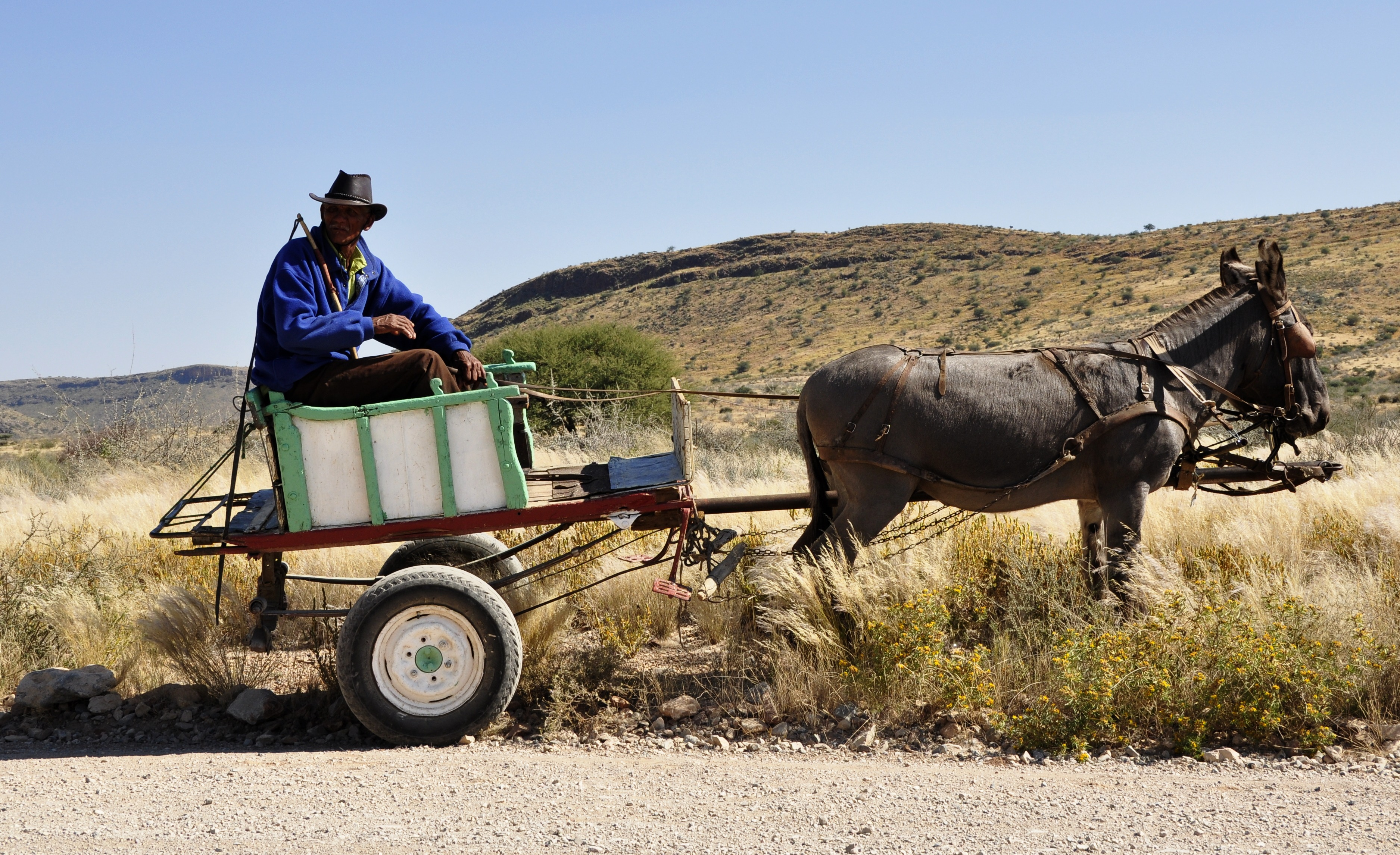 Data from a donkey cart